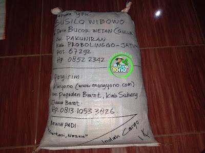 Benih Padi Pesanan   SUSILO WIBOWO Probolinggo, Jatim  Benih Sesudah di Packing
