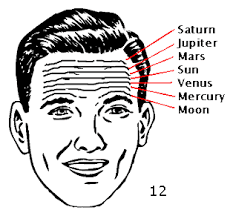 Signs On The Head - How to Read The Forehead