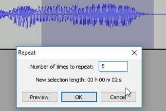 number of times looping audacity
