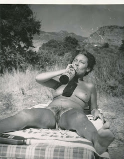 Hairy amateur in vintage outdoor picnic