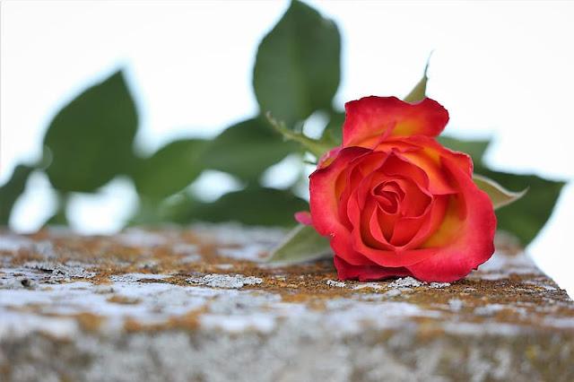 Αργολίδα: Θλίψη για την απώλεια Βαγγέλη Καραγιάννη