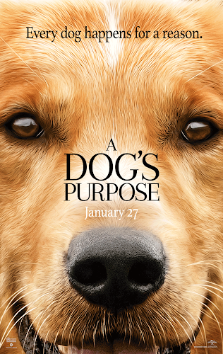 A Dog's Purpose (BRRip 720p Dual Latino / Ingles) (2017)