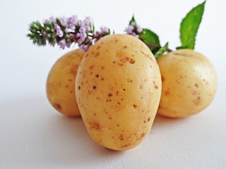 Three potatoes with a leaf branch