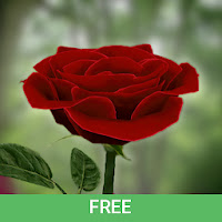 3D Rose Live Wallpaper Free Apk Download for Android