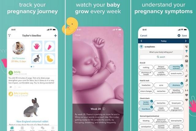 أفضل تطبيق لمتابعة الحمل للايفون