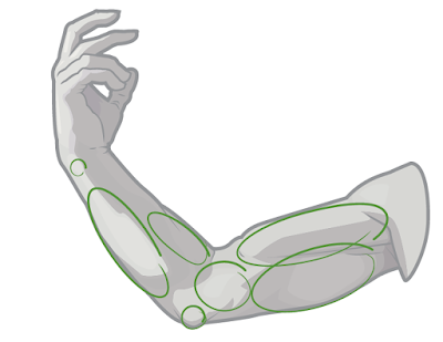 Draw quick guides to show where the anatomy belongs.