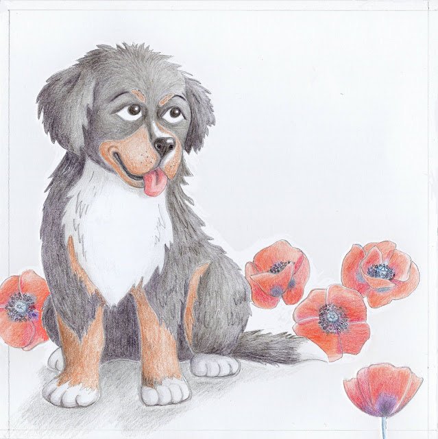 Bernise mountain dog poppy illustration berni alpi karjakoer moonid illustratsioon Aide Leit-Lepmets