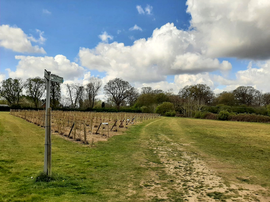The bridleway through Hawkswick Fruit Farm (point 3)