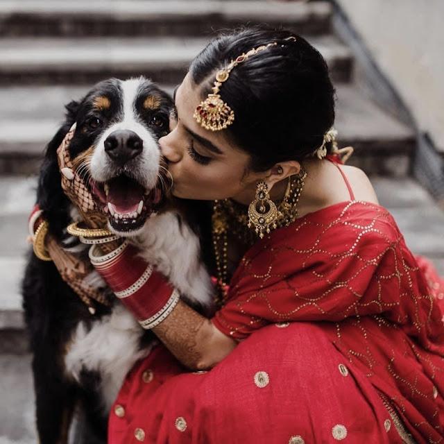 Beautiful Bridal Pic Download