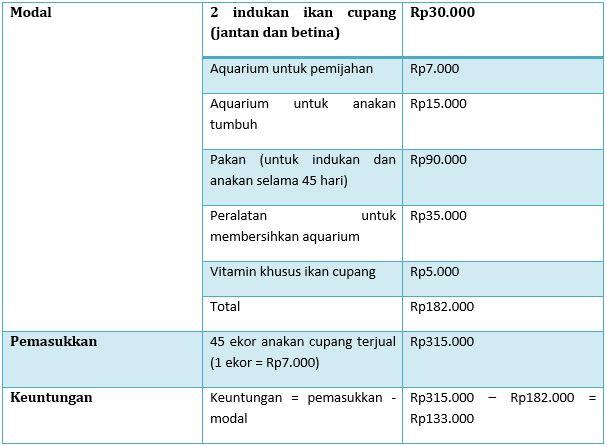 Analisis Usaha dan Keuntungan Penjualan Ikan Cupang Hias