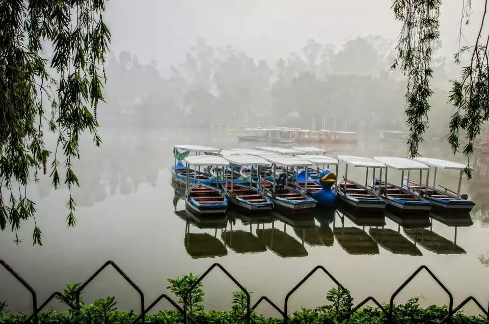 Another Foggy Burnham Lake Cluster of Boats Baguio City Philippines