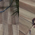 Ladrão deixa rastro de sangue durante furto à Casa Paroquial de São José de Piranhas