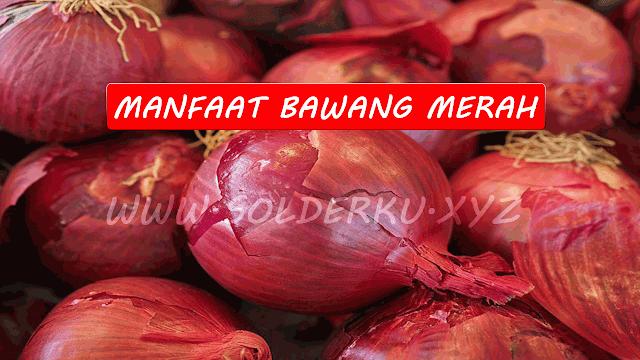 Manfaat Bawang Merah Untuk Kesehatan Dan Kecantikan