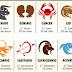 Los cuatro elementos del zodiaco