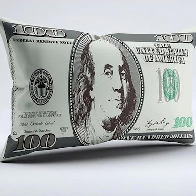 Dollar Pillow Case