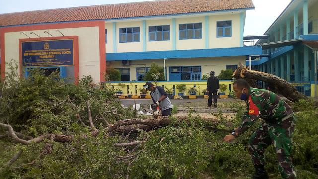 Babinsa Bersama Warga Evakuasi Pohon Tumbang