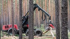 Tujuan pemanenan hutan adalah untuk meningkatkan nilai tambah hutan, membuka lowongan pekerjaan dan akses wilayah, memberikan kontribusi bagi negara.