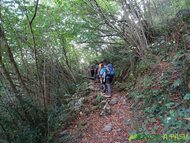 Peña Sienra desde Covadonga: Sendero entre Covadonga y la Vega de Orandi