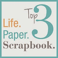 Challenge of Life Paper Scrapbook 2014