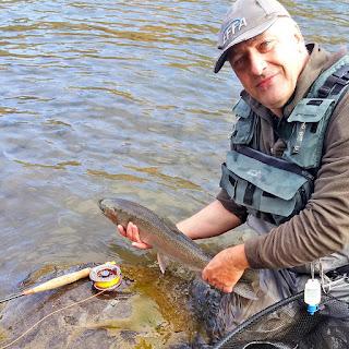 Am Bulkley River, eine kleine Steelhead beim Fliegenfischen