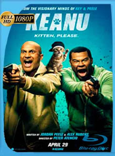 Keanu 2016 HD [1080p] Latino [GoogleDrive] DizonHD