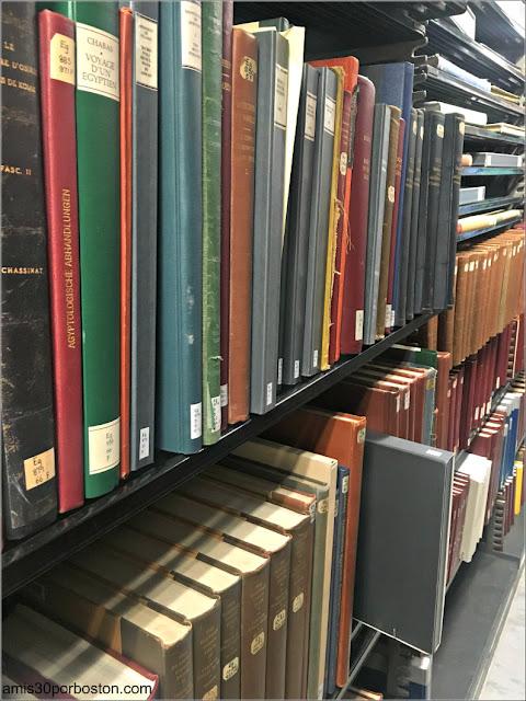 Libros de la Biblioteca Widener en la Universidad de Harvard