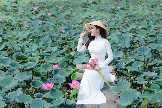 Áo Dài Hoa Sen ở Tp Hồ Chí Minh - Áo Dài Trắng