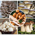 Mushroom spawn supplier in Gangapur