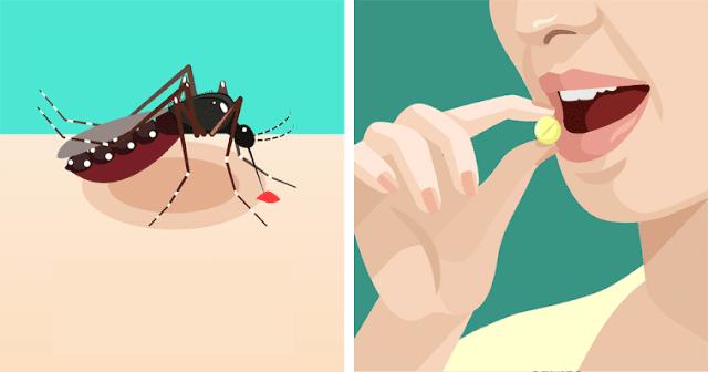 δεν θα σας τσιμπήσει ούτε ένα κουνούπι