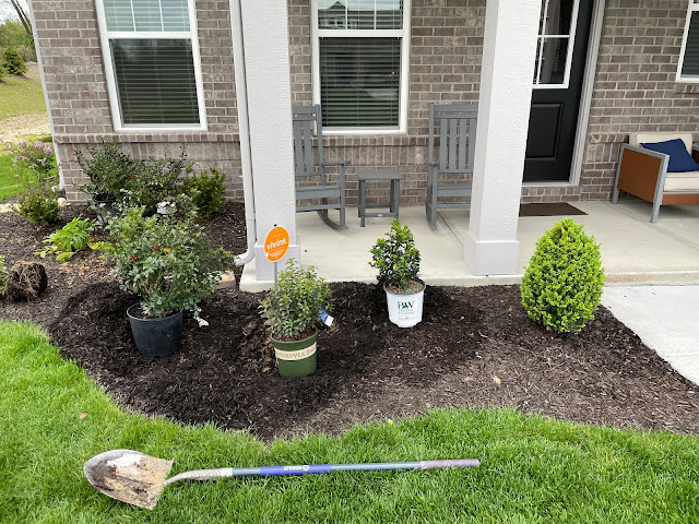 plants in pots with shovel before being planted