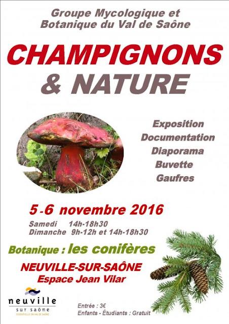Exposition CHAMPIGNONS ET NATURE Lyon 2016