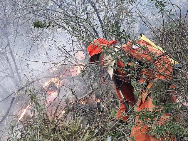 O local fica em um ponto de difícil acesso e os bombeiros militares realizaram escaladas para combater o fogo (Foto: Corpo de Bombeiros)
