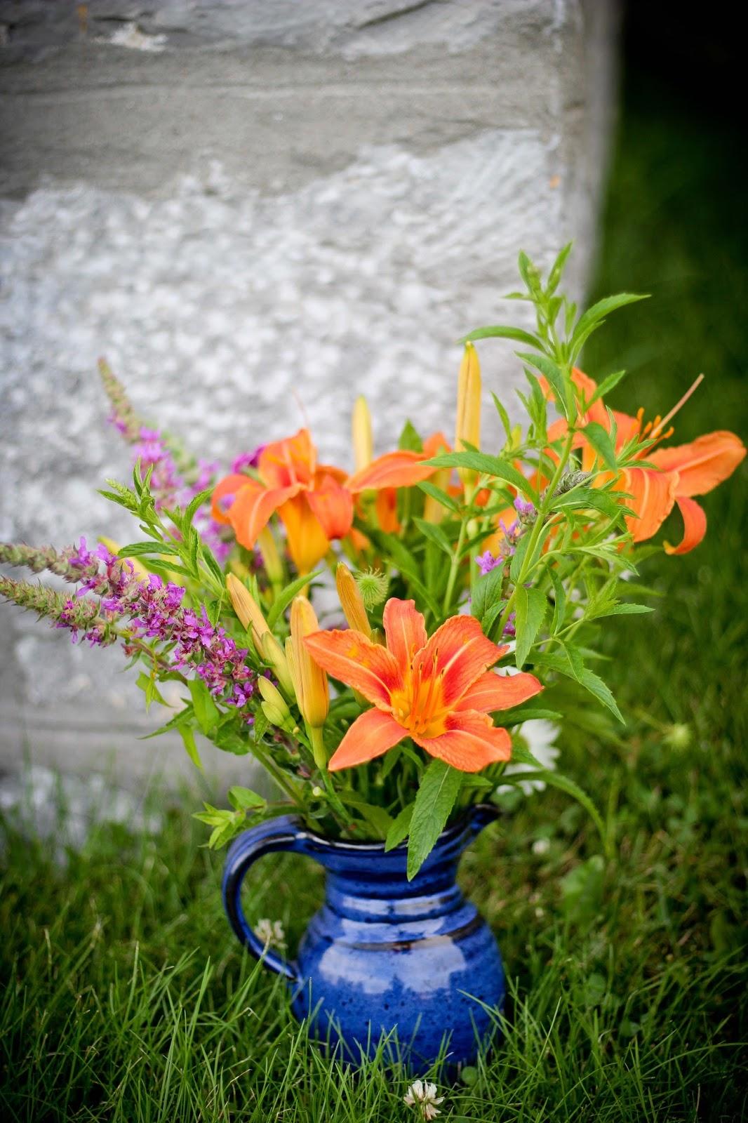 Petites fleurs sauvages et coquets bouquets