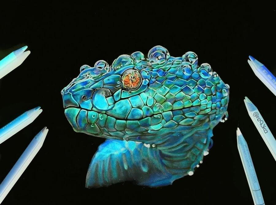 17-Snake-with-water-droplets-N-Réka-Gyányi-www-designstack-co