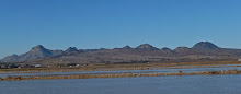 California's Sutter Buttes