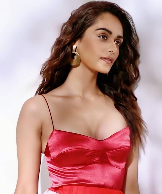Manushi Chhillar Hot Photos