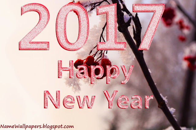 Happy New Year 2017 Whatsapp Pictures Images for Videos Download