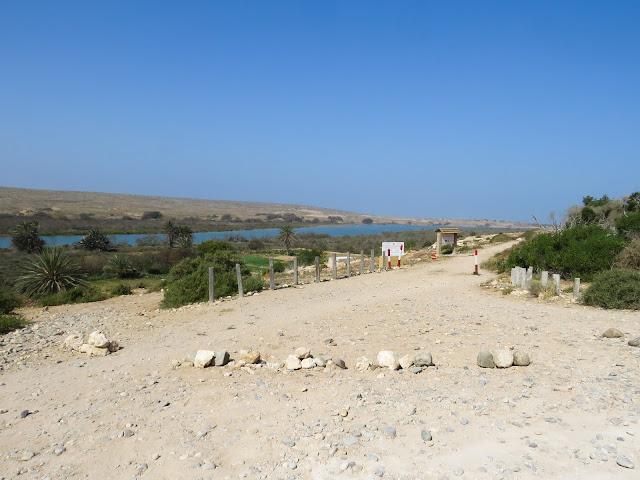 Souss Massa National Park - Morocco