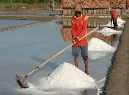 Metode Pemisahan Campuran Garam dari Air Laut