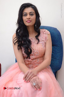 Actress Neha Hinge Stills in Pink Long Dress at Srivalli Teaser Launch  0130.JPG