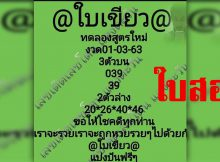 ใบ เขียว 1 12 61