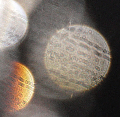 oval shapes in orbs