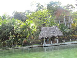 Polynesian style huts lining the Rio Dulce River