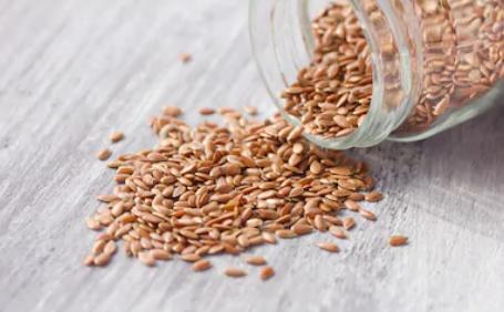 Flaxseed food