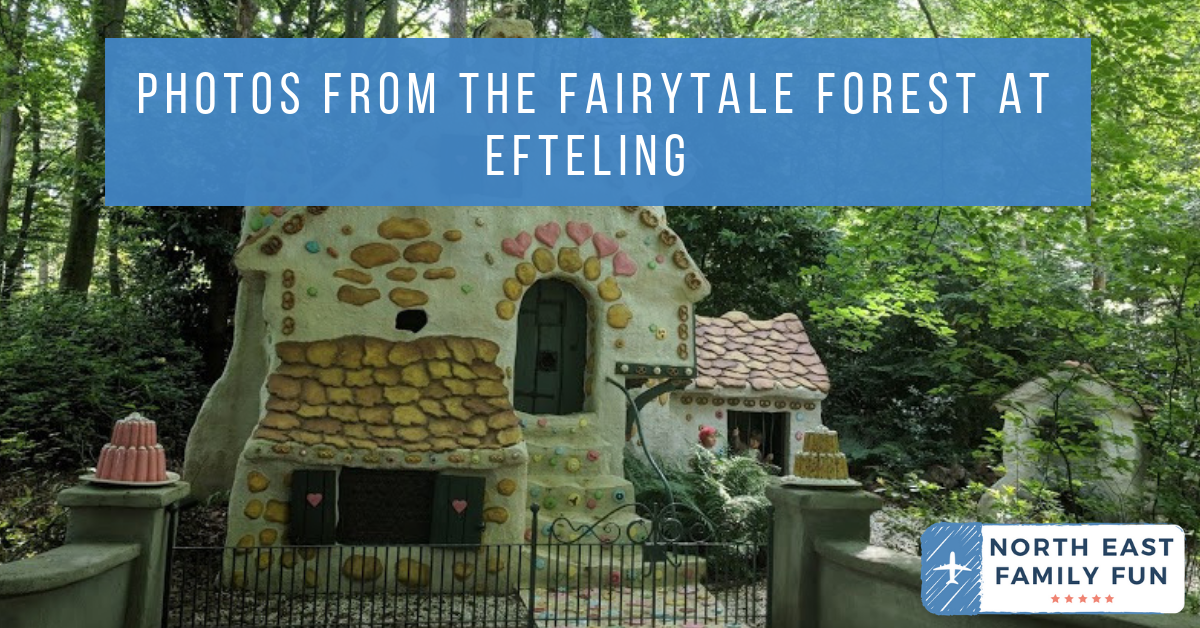 Photos from the Fairytale Forest at Efteling