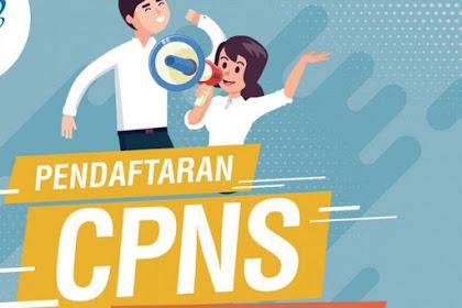 KABAR GEMBIRA, Pelamar CPNS Kategori P1/TL Diberikan Peluang Gunakan Nilai SKD Tahun 2018 Untuk Seleksi Lowongan CPNS Tahun 2019