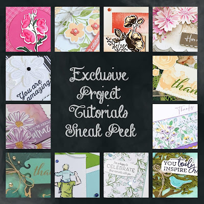 Exclusive Project Tutorials Sneak Peek for my customers! | Nature's INKspirations by Angie McKenzie
