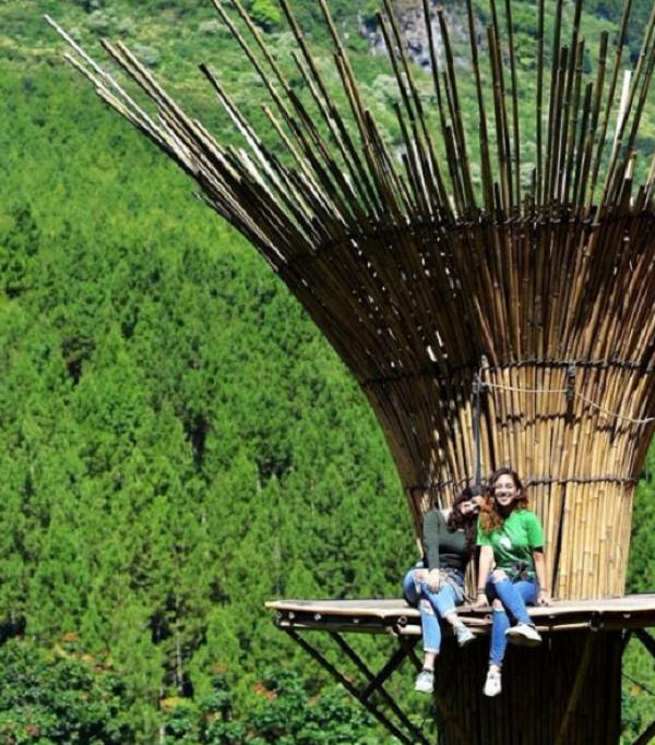 Bamboo Sky The Lodge Maribaya Lembang