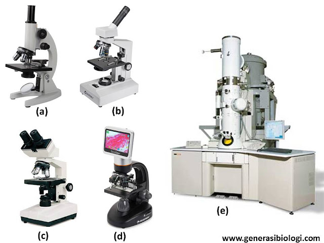 macam mikroskop elektron, macam mikroskop cahaya, macam mikroskop pdf, macam mikroskop berdasarkan sumber cahaya, macam mikroskop dan bagiannya, macam mikroskop berdasarkan sumber sinarnya, macam mikroskop kelebihan dan kekurangan, macam mikroskop dan kelebihannya, macam mikroskop dan kegunaanya, macam mikroskop dan perbedaannya, macam macam mikroskop dan fungsinya pdf, macam-macam mikroskop beserta bagian dan fungsinya, macam macam mikroskop dan penemunya, macam macam mikroskop dan cara kerjanya, sebutkan macam mikroskop berdasarkan sumber sinarnya, macam perbesaran mikroskop, dua macam mikroskop elektron, bagian mikroskop dan fungsinya, bagian mikroskop yang berfungsi untuk memperbesar bayangan obyek adalah