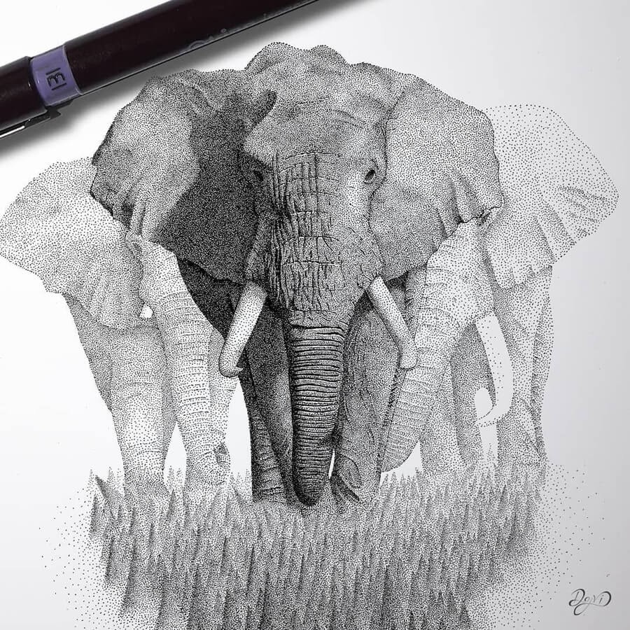 04-The-elephants-Dejvid-Knezevic-www-designstack-co